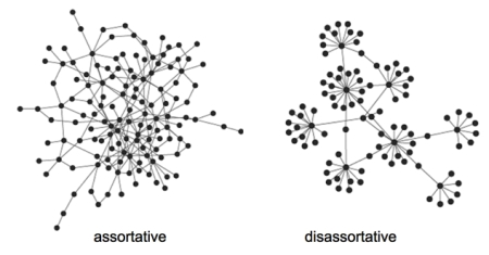 assortative_disassortative