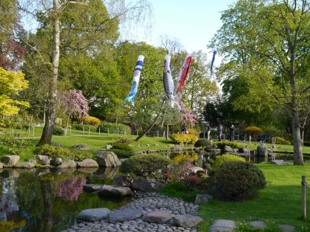 Japanese Garden April 2016